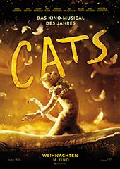 Hauptfoto Cats