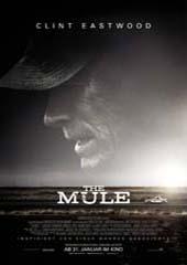 Hauptfoto The Mule